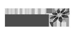 Website user interface Mooiland logo